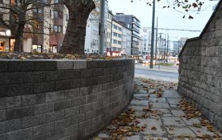 Trockenmauer als Baumeinfassung