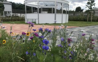 Mustergarten mit Insektenwiese und Soccer Cage
