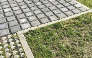 Ökologisch Bauen: Rasengrün_WR